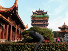 Digesting China
