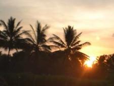 Staged Sunrise